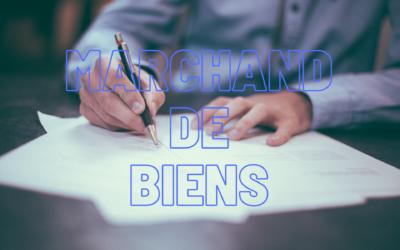 Marchand De Biens : Statut, Métier, Fiscalité
